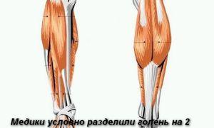 Причины по которым болят ноги ниже колен - симптомы лечение