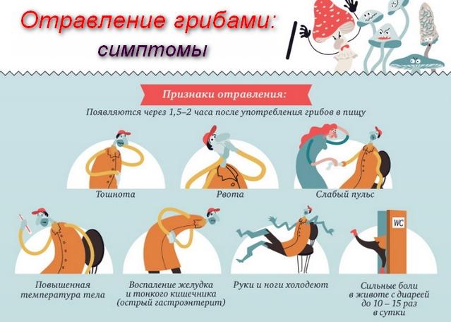 Отравление грибами симптомы первая помощь реферат провод отделив пострадавшего от земли подсунуть под него сухую доску если пострадавший отравление грибами симптомы первая помощь реферат судорожно