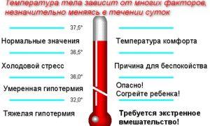 О причинах пониженной температуры тела