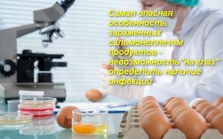 Симптомы и первая помощь при отравлении яйцами