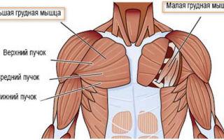 Все методы лечения растяжения грудных мышц
