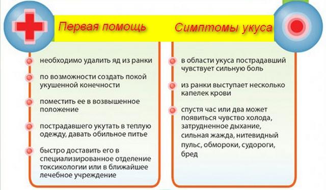 список симптомов и помощи