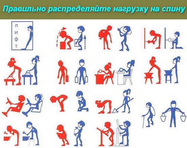 картинки распределения нагрузки на спину