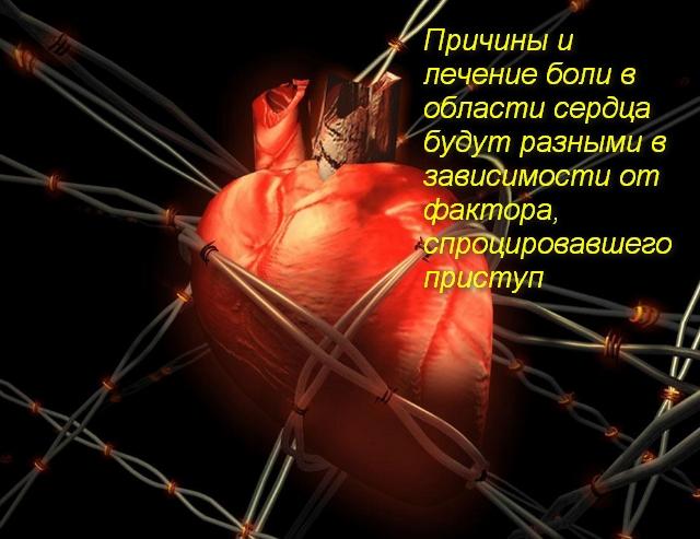 сердце в сетях